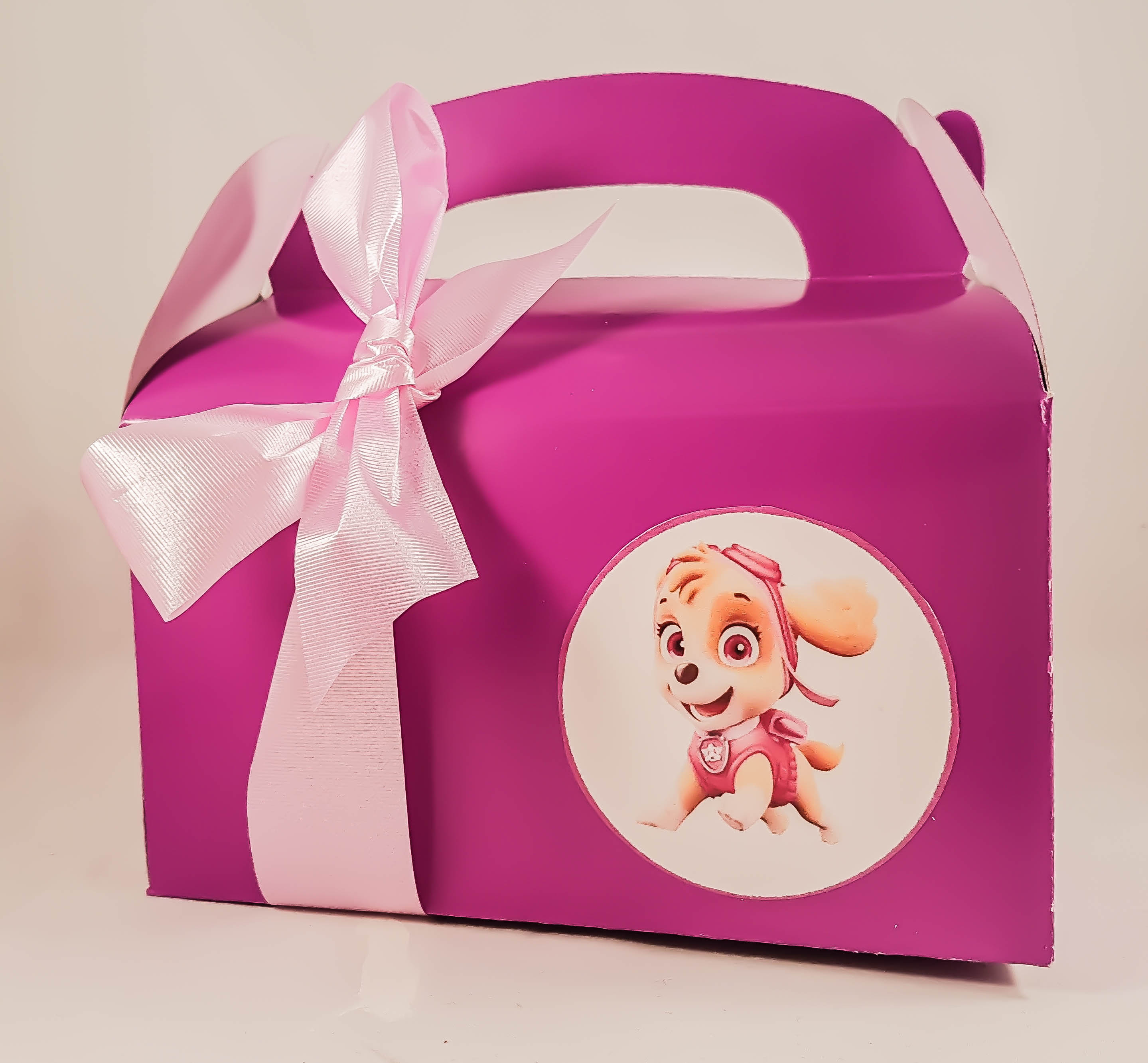First Birthday Boy Party Loot Bag Single: Kids Birthday Party Loot Bag Paw Patrol Planes Cars And